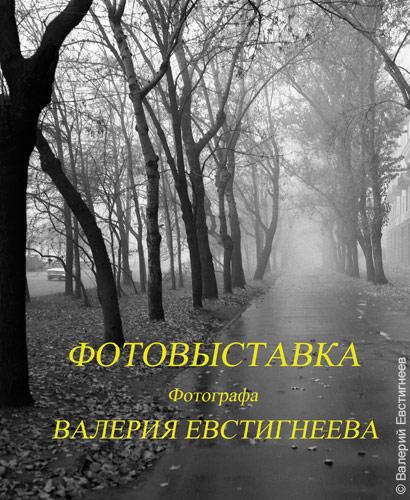 vistavki5.jpg